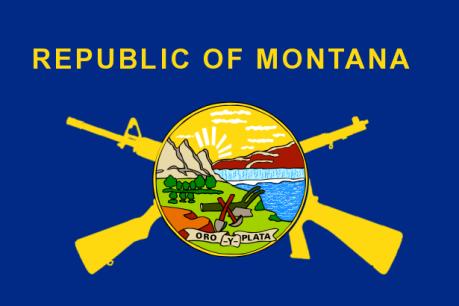 MT Gun Flag